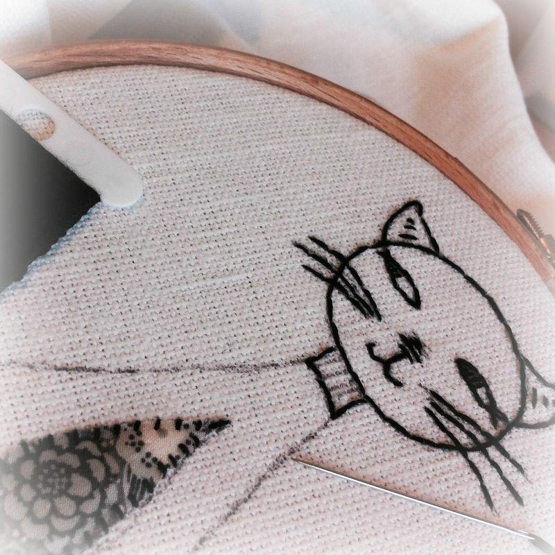 Blog cat
